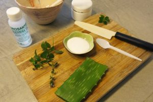 how-to-make-unplugged-aloe-vera-toothpaste-3-537x358